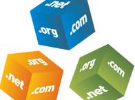 Domain Names and Transfers